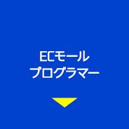 ECモールプログラマー